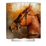 Tennessee Walker In August Shower Curtain