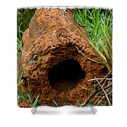 Termite Mound In Brazil Shower Curtain