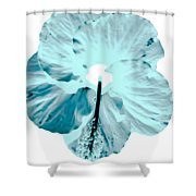 Test Hibiscus Two Shower Curtain