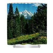 Teton Meadow Shower Curtain