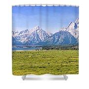 Teton Panorama Shower Curtain