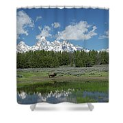 Teton Reflection With Buffalo Shower Curtain