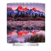 Teton Reflections In The Frosted Willows Shower Curtain