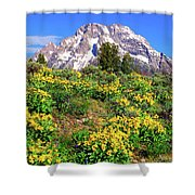 Teton Spring In The Valley Shower Curtain