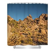 Teutonia Sunset Shower Curtain