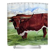 Texan, Extra Huge Shower Curtain