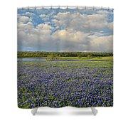 Texas Bluebonnet Bliss Shower Curtain