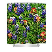Texas Bluebonnets And Indian Paintbrush Shower Curtain
