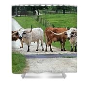 Texas Cattle Guard Shower Curtain