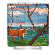 Texas Cow's Blulebonnet Field Shower Curtain
