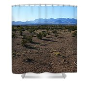 Texas Desert Shower Curtain