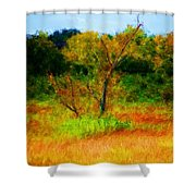 Texas Landscape 102310 Shower Curtain