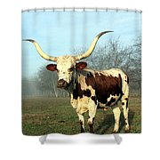 Texas Longhorn At Sunrise Shower Curtain