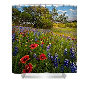 Texas Paradise Shower Curtain