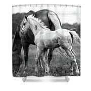 Texas Ranch  Shower Curtain