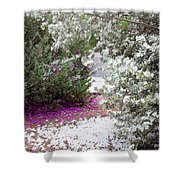 Texas Sage No2 Shower Curtain