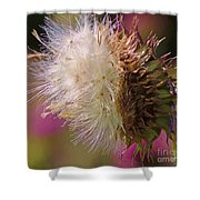 Texas Thistle 004 Shower Curtain