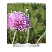Texas Thistle Shower Curtain