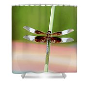Texas Widow Skimmer - 10 Digitalart Shower Curtain