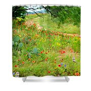 Texas Wildflowers And Cactus - Country Road Shower Curtain
