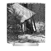 Texas Winter Shower Curtain