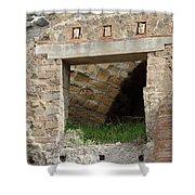 Textural Antiquities Herculaneum Four Shower Curtain