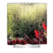 Texture And Detail Shower Curtain