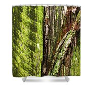 Texture Series Shower Curtain