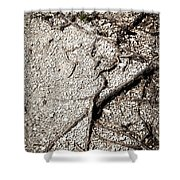 Texture With Root With Plenty Of Pebbles Shower Curtain