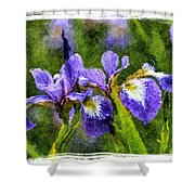 Textured Bearded Irises Shower Curtain
