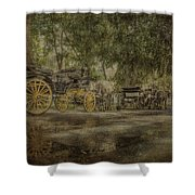 Textured Carriages Shower Curtain
