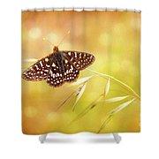 Textured Chalcedon Butterfly Shower Curtain