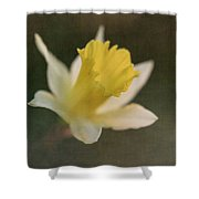 Textured Daffodil Shower Curtain