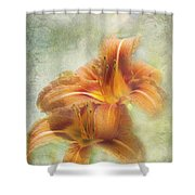 Textured Daylilies  Shower Curtain