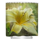 Textured Daylily Shower Curtain