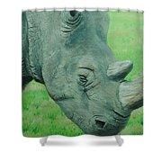 Textured Rhino Shower Curtain