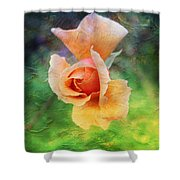 Textured Rose 3 Shower Curtain