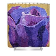 Textured Rose Shower Curtain