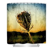 Textured Seedhead. Shower Curtain