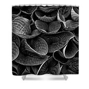 Textures And Tones Shower Curtain