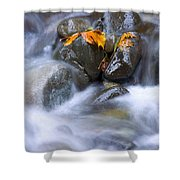 Textures Of Autumn Shower Curtain