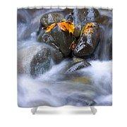 Textures Of Autumn Shower Curtain