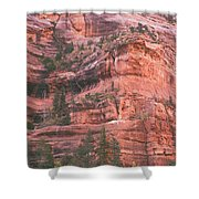 Textures Of Zion Shower Curtain