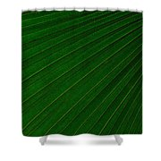 Texturized Palm Leaf Shower Curtain