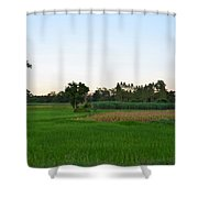Thai Fields Shower Curtain