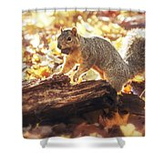 Thanksgiving Feast Shower Curtain