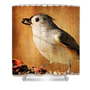 Thanksgiving's Bounty Shower Curtain