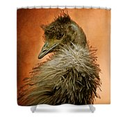 That Shy Come-hither Stare Shower Curtain