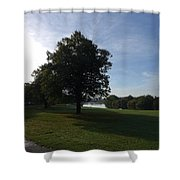 That Tree, 6th October, 2015 Shower Curtain