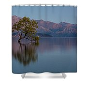 That Tree - Wanaka Shower Curtain